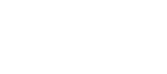 GF Securities