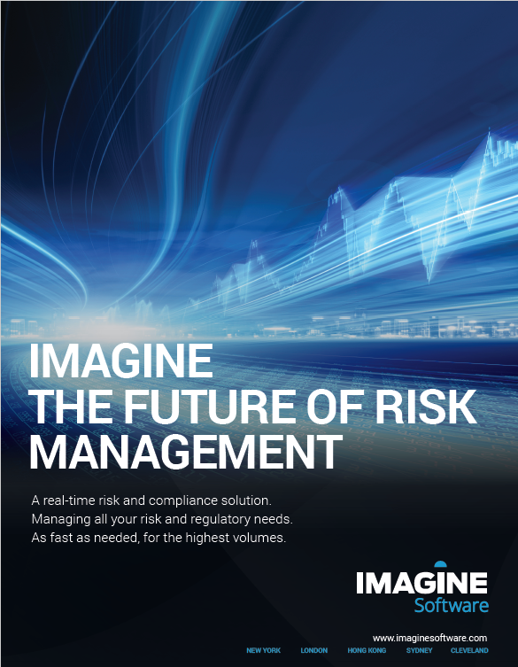 The Future of Risk Management